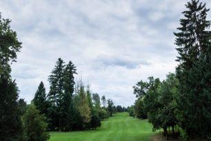 Masters Golf Tournament November 2020 - My Golf Cart Review